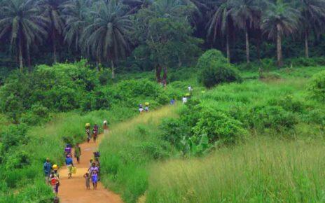 Сьерра-Леоне: особенности и запреты