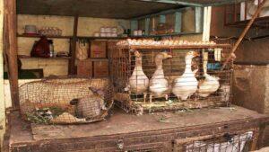 Камерун: запреты и ограничения