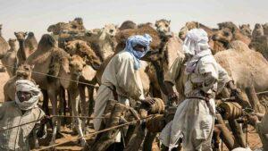 Особенности и запреты Чада