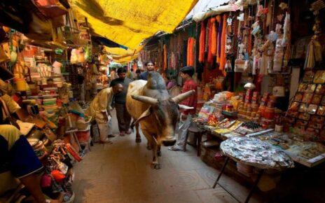 Особенности и запреты в Индии