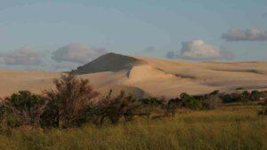 Ограничения и запреты в Мозамбике